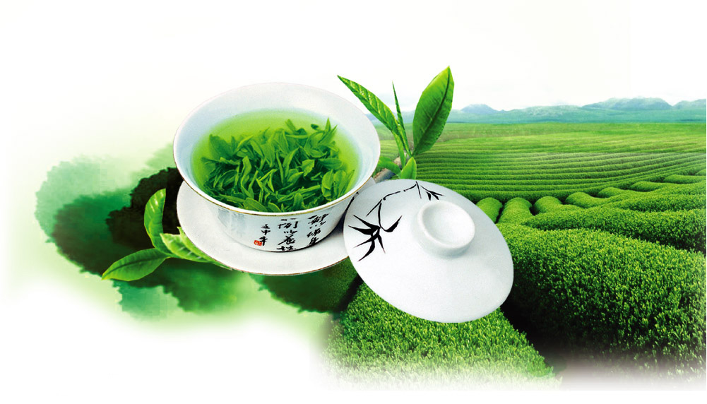 江安县底蓬早茶协会