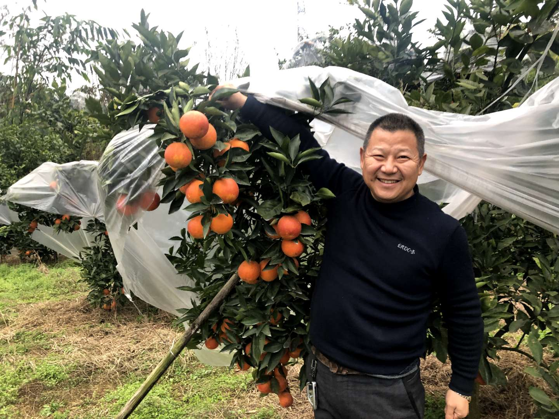 江安县名优养殖农民专业合作社