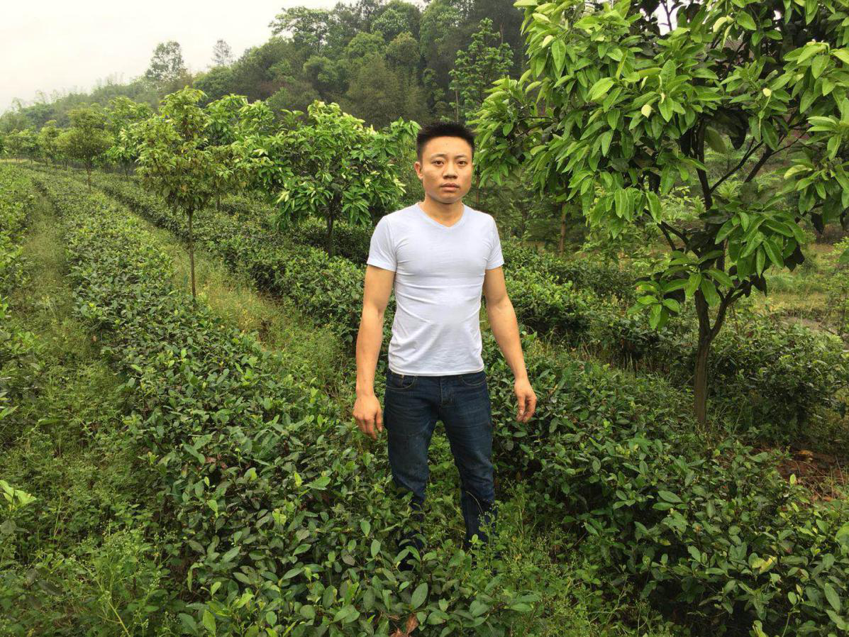 江安县怡乐镇红兴家庭农场
