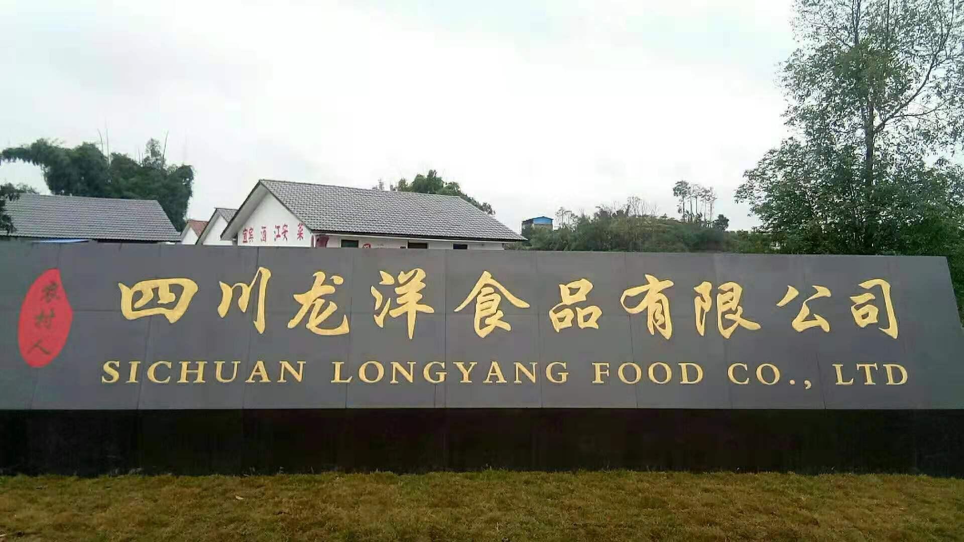 四川龙洋食品有限公司