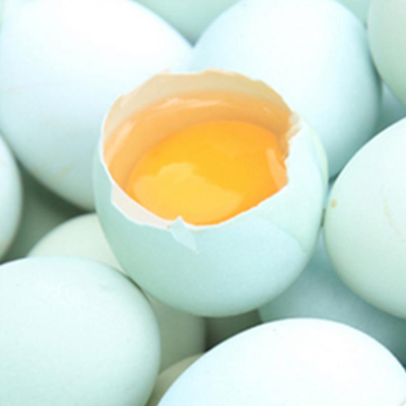 天堂无公害绿壳鸡蛋