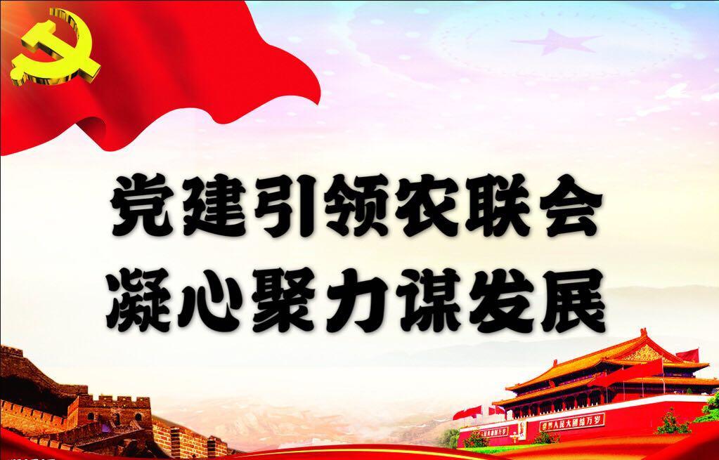 党建引领农联会  凝心聚力谋发展